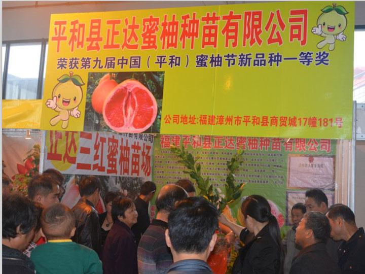平和县正达蜜柚种苗有限公司参加浙江金华苗木展会