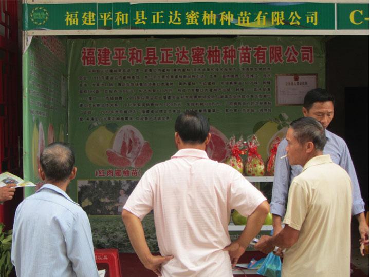 平和县正达蜜柚种苗有限公司参加广西百色苗木展会