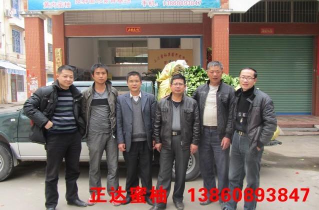 赣州客户到正达大三红蜜柚苗基地订购4千多棵大三红蜜柚苗