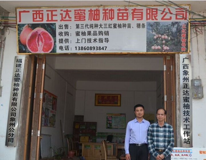 平和县正达蜜柚种苗有限公司广西分公司