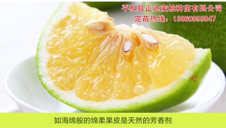 葡萄柚的种植管理方法,甜葡萄柚苗适合哪里种植
